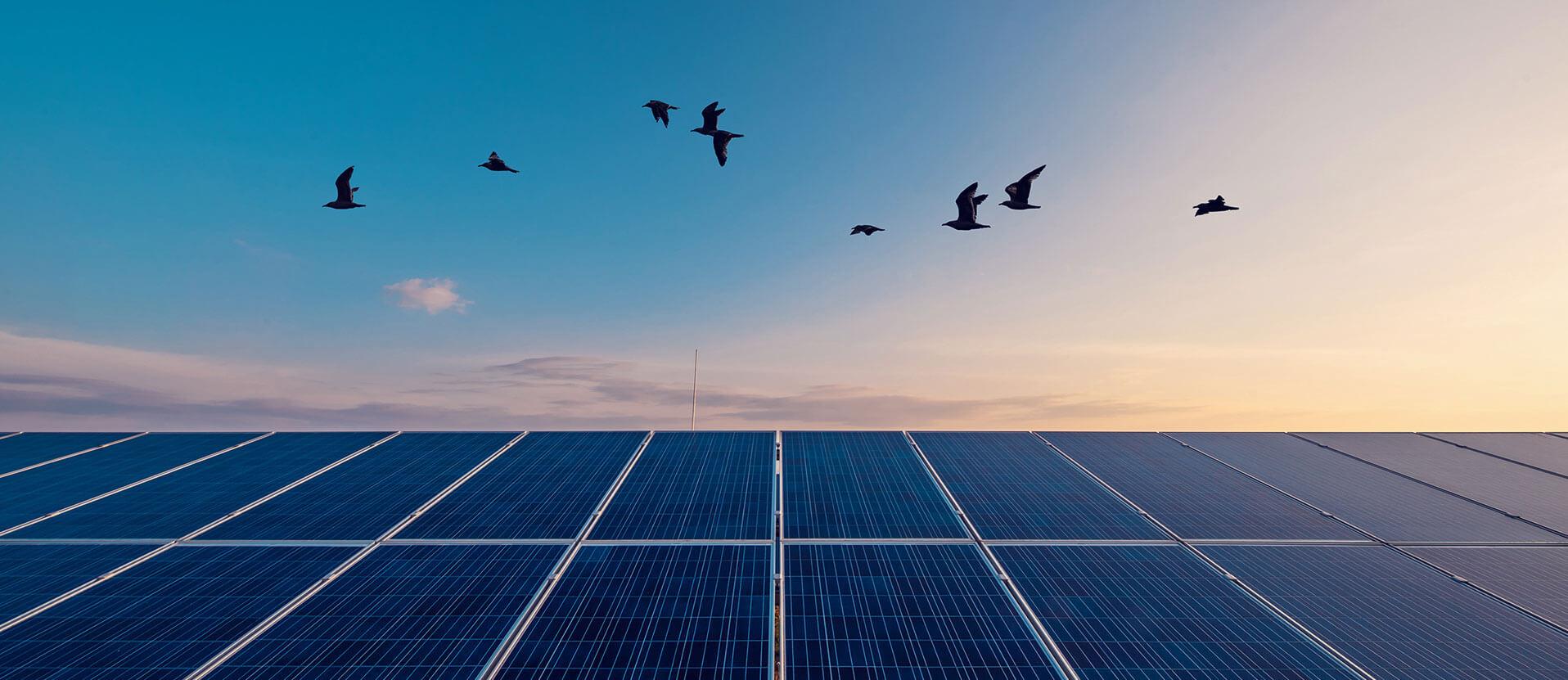 renewables-storage_development_banner